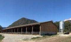 Construction d'un hangar agricole pour accueillir les cochons à la ferme du Lauzon - Montmaur